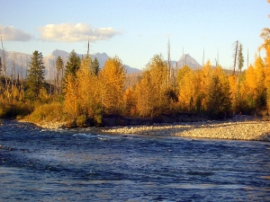 fall-on-the-flathead-river-polebridge-montana[3]