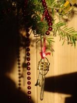 Christmas 2010 019