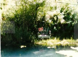 Granny's fishing pond