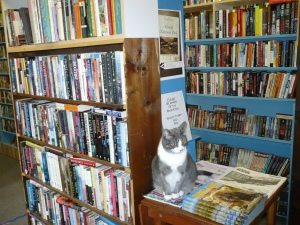 Lots and lots of books and a cat.