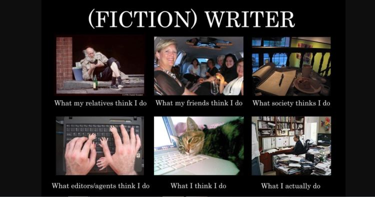 fiction writer